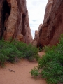 Sand Dune Arch 01
