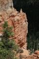 Black Birch Canyon_8