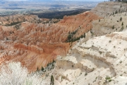 Bryce Point_17