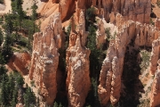 Bryce Point_21