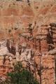Navajo Loop_13