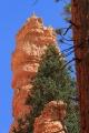 Navajo Loop_23