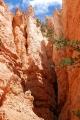 Navajo Loop_26