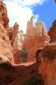 Navajo Loop_29