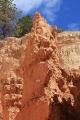 Navajo Loop_41
