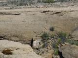 Mesa Trail 06