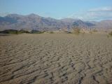 Mesquite Sand Dunes 12