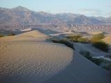 Mesquite Sand Dunes 14