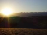 Mesquite Sand Dunes 15