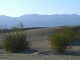 Mesquite Sand Dunes 05