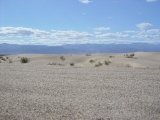 Mesquite Sand Dunes 09