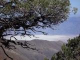 Death Valley 04