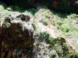 Weeping Rock 02